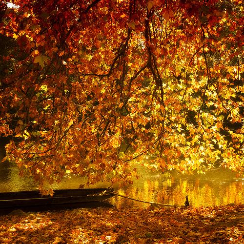 De ce iubim luna octombrie?